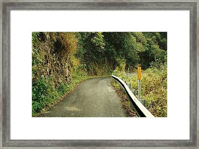 Maui Highway Framed Print by Marilyn Wilson