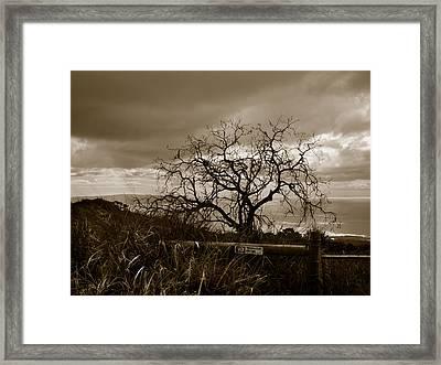 Maui Storm Framed Print