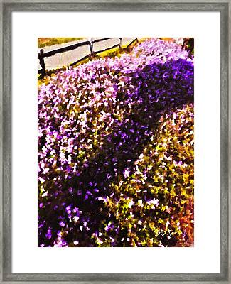 Mauve Framed Print by Brian D Meredith