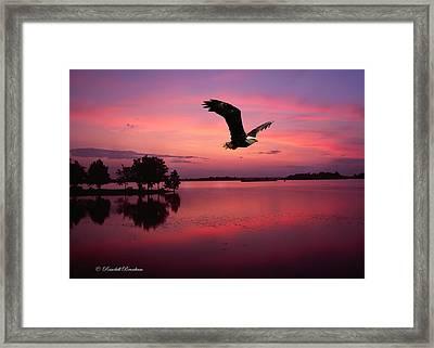 Framed Print featuring the photograph Mauve Sundown Eagle  by Randall Branham