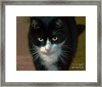 Max Framed Print by Dale   Ford