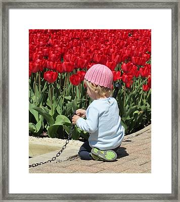 May Day May Day Framed Print by Todd Sherlock