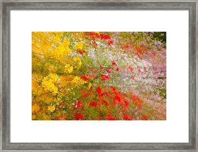 May Impression Framed Print by Bobbie Climer