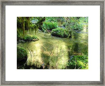 Mckenzie Pool Framed Print