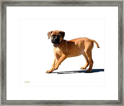 Me And My Shadow 3 Framed Print