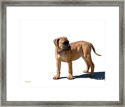 Me And My Shadow 4 Framed Print by Dale   Ford