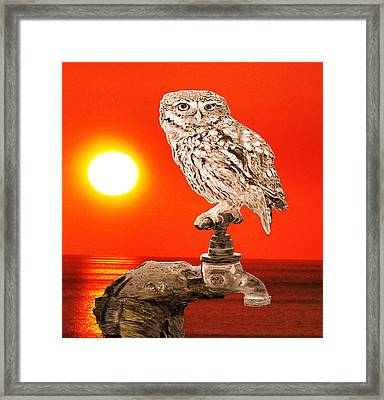Me Myself And I  Framed Print by Eric Kempson