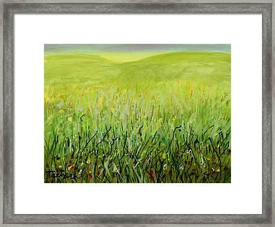 Meadow Four Framed Print