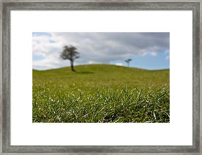 Meadow Framed Print by Semmick Photo