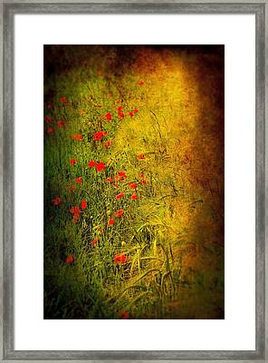 Meadow Framed Print by Svetlana Sewell