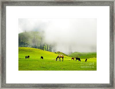 Meadows Of Heaven Framed Print