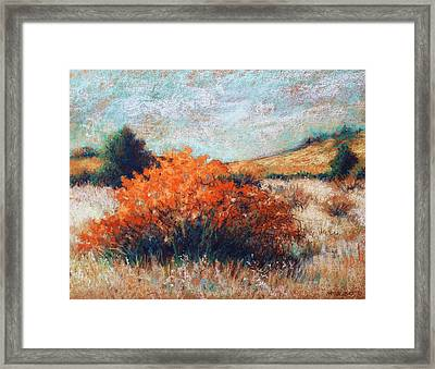 Meandering II Framed Print by Peggy Wrobleski