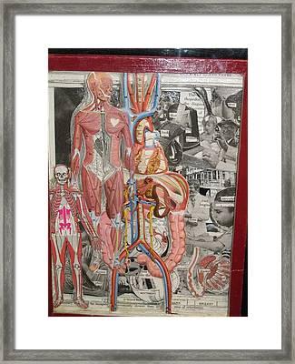 Medical Framed Print by Francisco Magos
