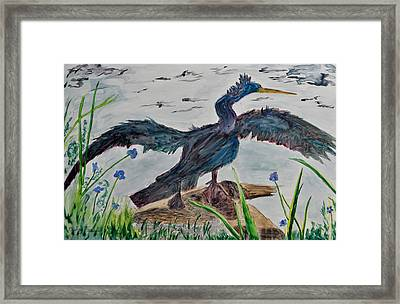 Anhinga-drying Out Framed Print by Mickey Krause