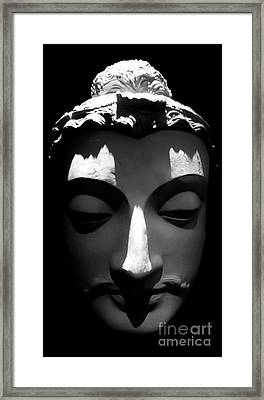 Meditation 2 Framed Print by Elena Mussi