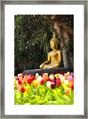 Meditation Buddha Statue In Tulips Garden Under The Bodhi Tree. Framed Print by Panupong Roopyai