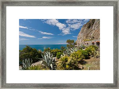 Mediterranean Garden Framed Print by Mike Reid