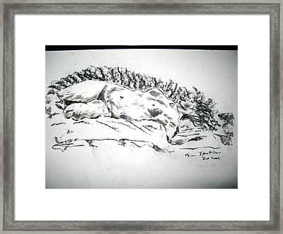 Medusa In Recline Framed Print by Brian Sereda