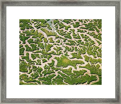 Medway Water Channels Framed Print by Christopher Hope-Fitch