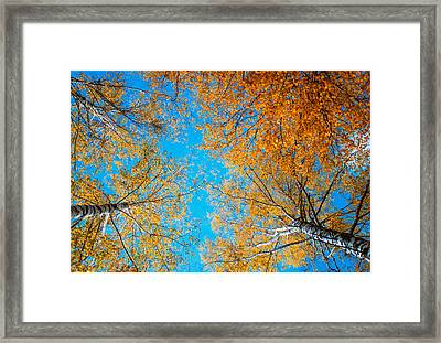 Meet In Heaven. Autumn Glory Framed Print by Jenny Rainbow