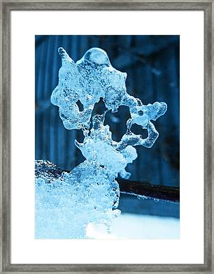 Framed Print featuring the photograph Meet The Ice Sculpture by Steve Taylor