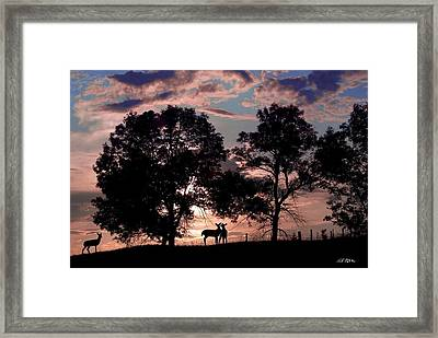 Meeting In The Sunset Framed Print by Bill Stephens