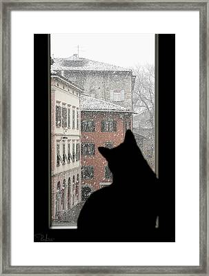 Framed Print featuring the photograph Melancholy by Raffaella Lunelli