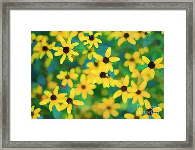 Melody Of Yellow Framed Print by Darren Fisher