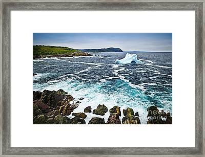 Melting Iceberg In Newfoundland Framed Print by Elena Elisseeva