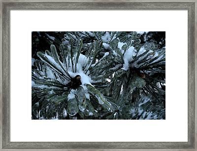 Memories In Ice Framed Print by Yvonne Scott