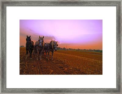Memories  Framed Print by John Ungureanu