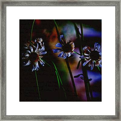 Memory Garden Framed Print by Bonnie Bruno