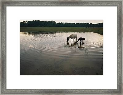 Mennonite Farm Child With Horse Framed Print by Randy Olson