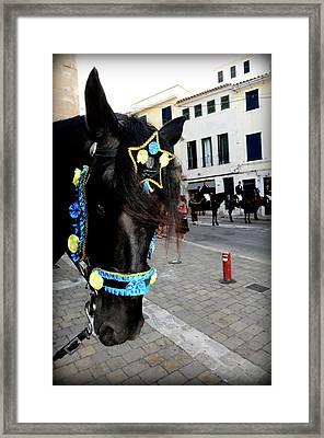 Framed Print featuring the photograph Menorca Horse 1 by Pedro Cardona