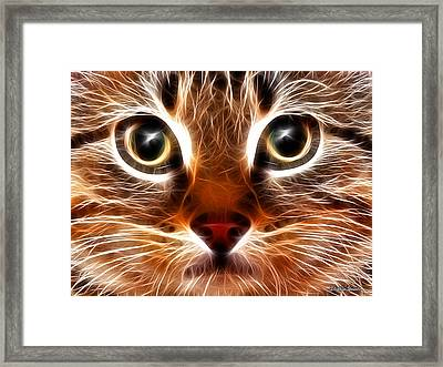 Meow Framed Print by Stephen Younts