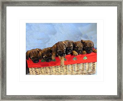 Merry Christmas 877 Framed Print by Larry Matthews