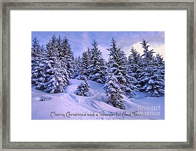 Merry Christmas And A Wonderful New Year Framed Print by Sabine Jacobs