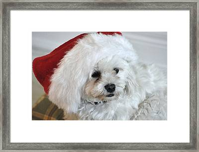 Santa's Hat Framed Print