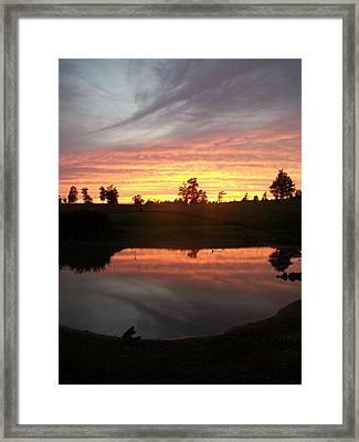 Mesmerized Framed Print by Wide Awake Arts