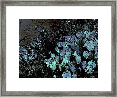 Mesquite And Prickly Pear On Ridge Framed Print