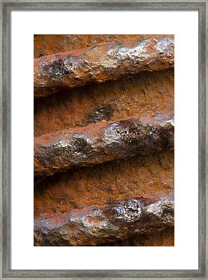 Metal Coil Framed Print by Carrie Cranwill
