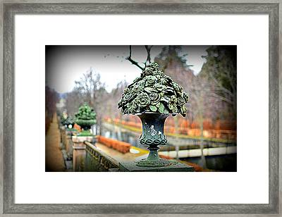 Metal Roses Framed Print by Photo Proyectolabs