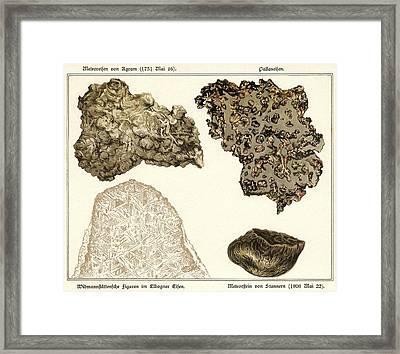 Meteorites, Historical Artwork Framed Print by Detlev Van Ravenswaay