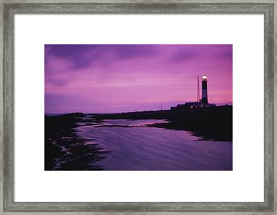 Mew Island, Belfast Lough, County Down Framed Print by Richard Cummins
