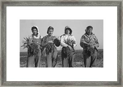 Mexican-american Young Women Working Framed Print by Everett
