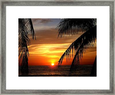 Mexican Sunset Sayulita Nayarit Framed Print by David Galleher