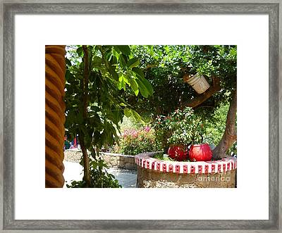 Mexico Color Framed Print