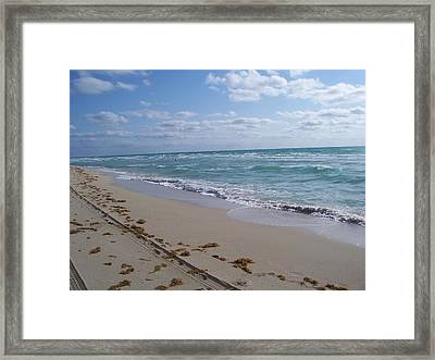 Miami In The Morning Framed Print by Sheila Silverstein