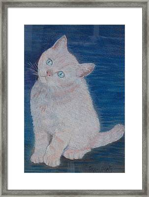 Miaow Framed Print by Noreen Hegarty