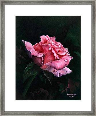 Michele's Rose Framed Print